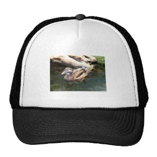 Female Wood Duck Trucker Hat
