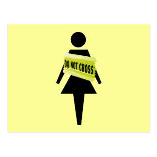 Feminist attitude funny feminist image postcard