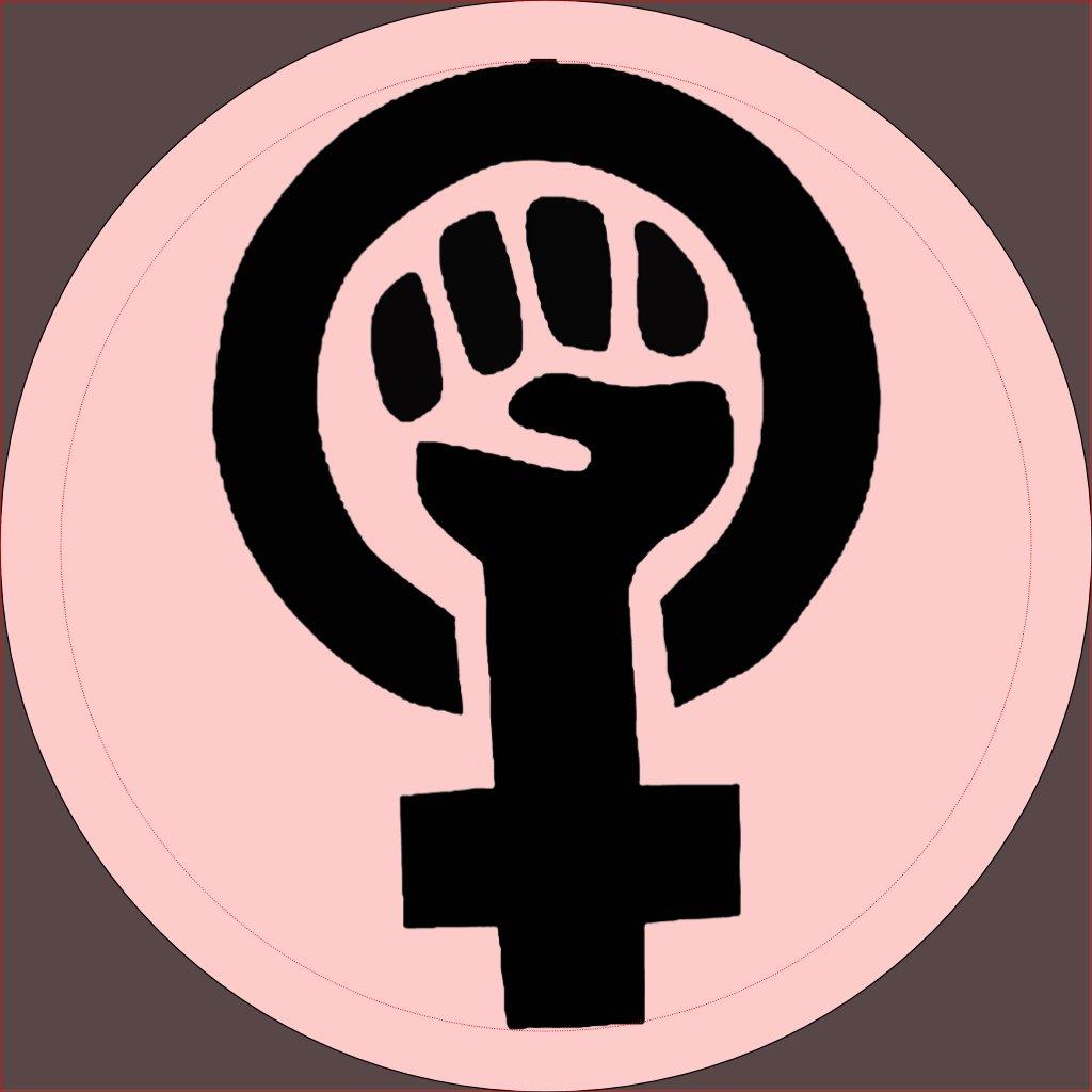 Feminist Symbol with Pink  Feminist Symbol