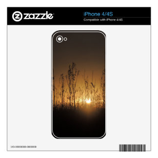 FEN SUNDOWN DECAL FOR THE iPhone 4S