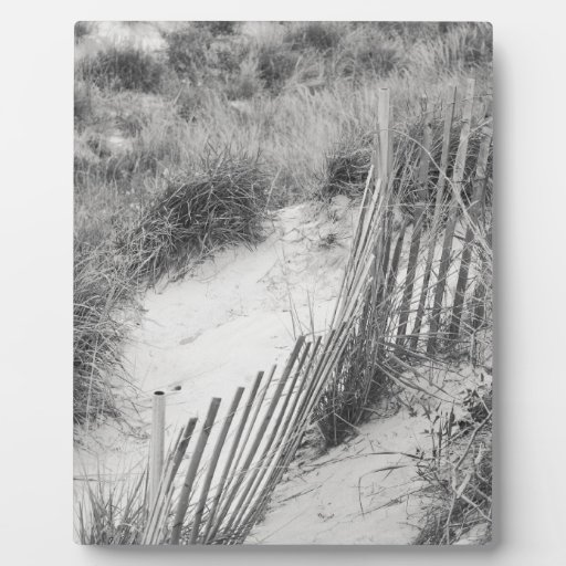 """""""Fence and Dunes"""" collection Plaques"""
