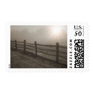 Fence and Sunburst Through Fog near Sharon Postage