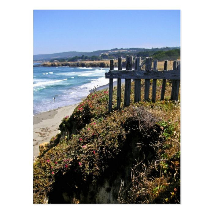 Fence at Cliff's Edge Postcard