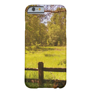 Fence at Oaks Bottom Barely There iPhone 6 Case