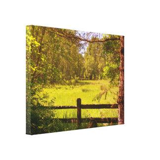 Fence at Oaks Bottom Canvas Print