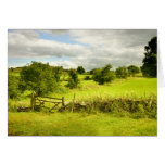 Fence, fields and Meadowsweet Greeting Cards