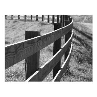 Fence Line Postcard
