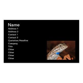 Fence Lizard Business Card Templates