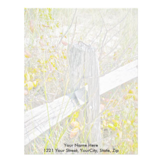 Fence & Poison Ivy IBSP Letterhead