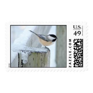 fence post postage