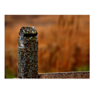Fence Post Postcard
