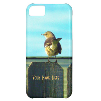 Fence Sitter Case For iPhone 5C