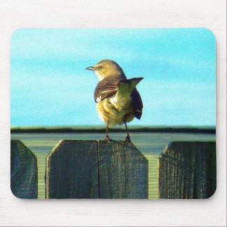 Fence Sitter Mouse Pad