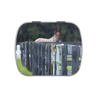 fence with faded horse behind candy tin