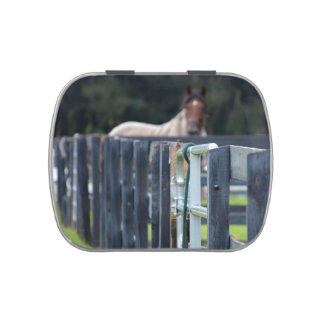 fence with faded horse behind jelly belly tin