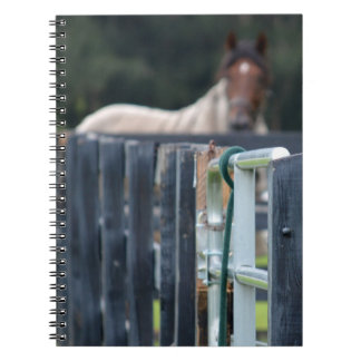fence with faded horse behind journal