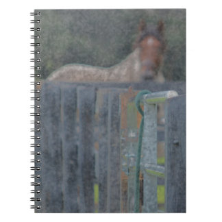 fence with horse behind abstracted grunged spiral note book