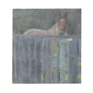 fence with horse behind abstracted grunged notepad