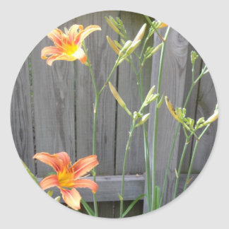 Fence with Lillies Classic Round Sticker
