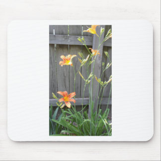 Fence with Lillies Mouse Pad