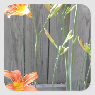 Fence with Lillies Square Sticker