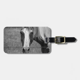 Fenced In Luggage Tag