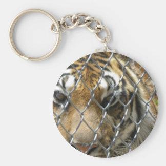 Fenced tiger keychain