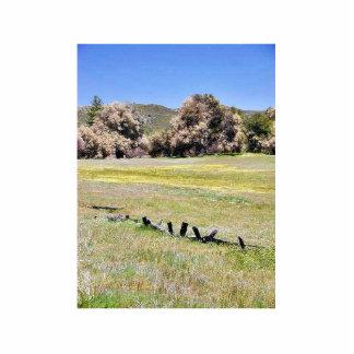 Fences Fields Meadows Trees Photo Cutout