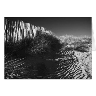 Fencing In The Dunes blank notelet / card card