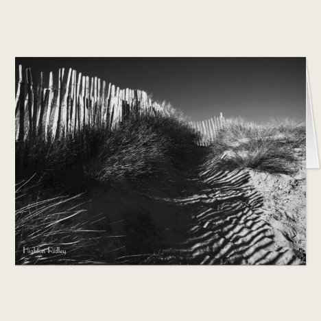 Fencing In The Dunes blank notelet / card