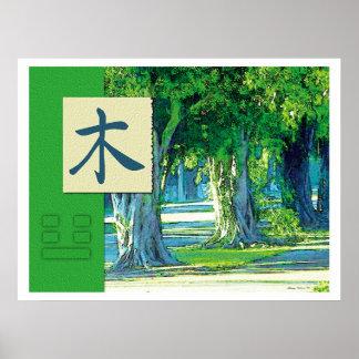 Feng Shui: Imágenes de Bagua: Paisaje de madera Póster