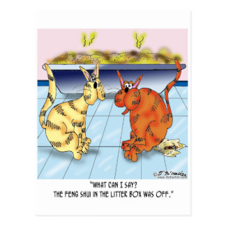 Feng Shui In The Litter Box Is Off Postcard