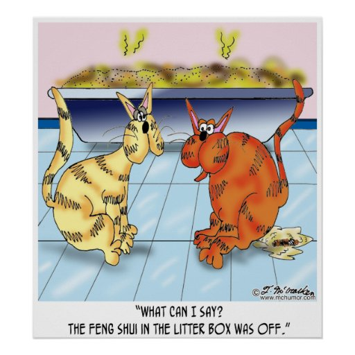 feng shui in the litter box is off poster zazzle. Black Bedroom Furniture Sets. Home Design Ideas