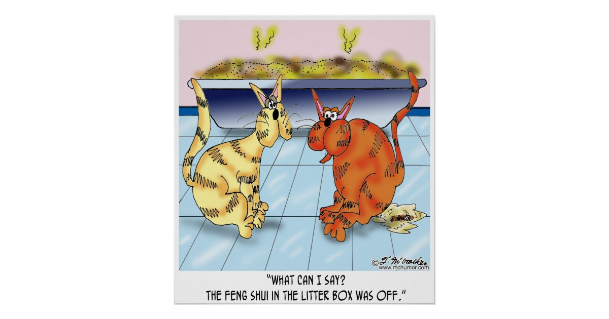 Feng shui in the litter box is off poster zazzle for Posters feng shui