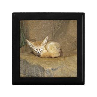 fennec fox jewelry box