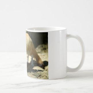 Fennec fox classic white coffee mug