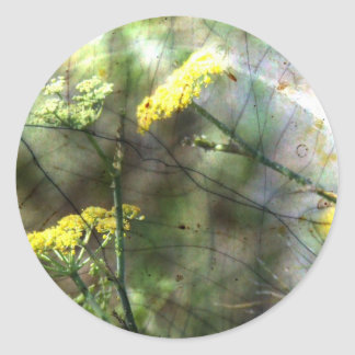 Fennel Classic Round Sticker