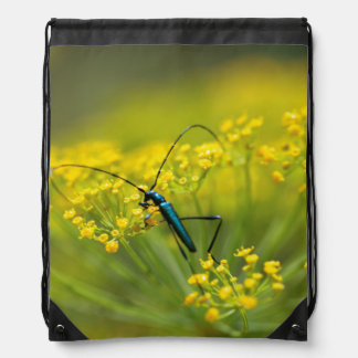 Fennel Flower And Blue Bug, South Africa Drawstring Bag