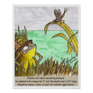 FENSTER THE FROG poster