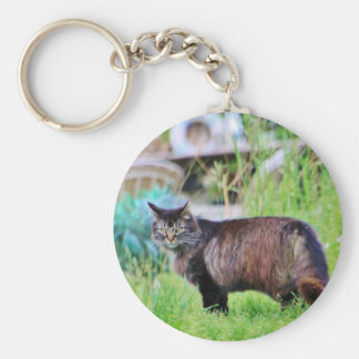Feral Black and Brown Cat Keychain