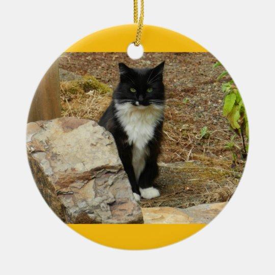 Feral Cat Momma Ceramic Ornament