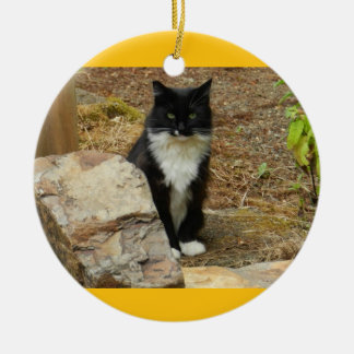 Feral Cat Momma Christmas Tree Ornaments
