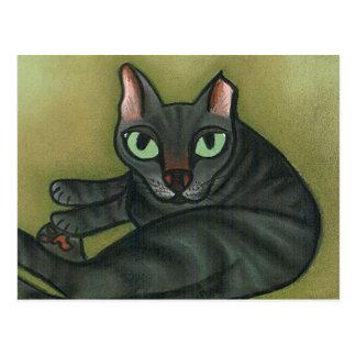 Feral Cat NURTURE Postcard