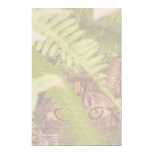 Feral Cat Stationery