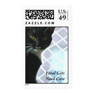 FERAL CAT U.S. postage