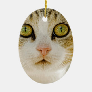 Feral Cat with Eyeliner Christmas Ornament