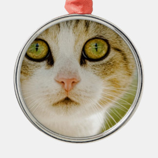 Feral Cat with Eyeliner Christmas Tree Ornaments