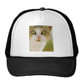Feral Cat with Eyeliner Trucker Hat