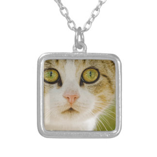 Feral Cat with Eyeliner Custom Jewelry