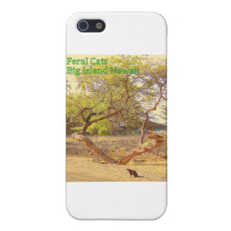 Feral Cats Big Island Hawaii Covers For iPhone 5